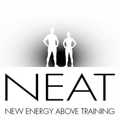 Logo NEAT NEW ENERGY ABOVE TRAINING
