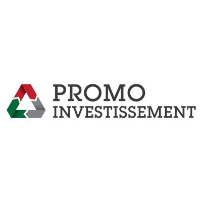 Promo Investissement SA