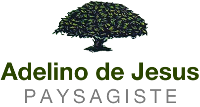 Adelino de Jesus Paysagiste