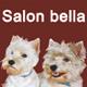 Salon de Toilettage Bella sur Roues