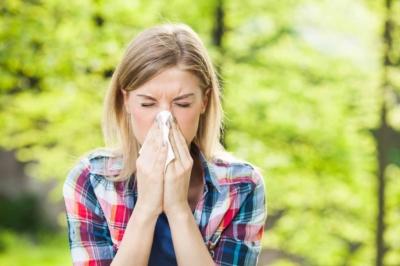 Pollenallergien: Sie sind zurück!