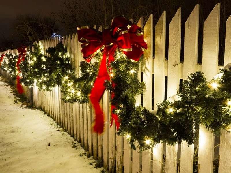 Noël : nos conseils pour décorer votre jardin : Editus