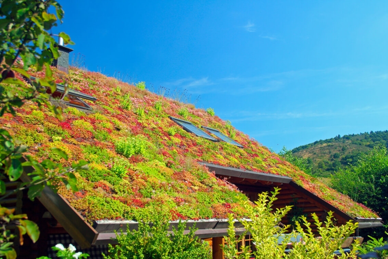 Green and passive roofs