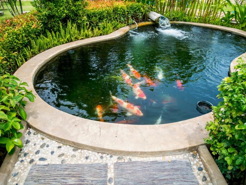 create garden pond
