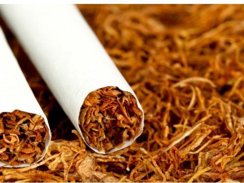 Fabricant et grossiste de cigare, cigarette, tabac.