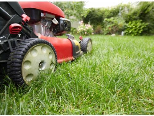 Espaces verts et entretien gazon, taille, etc