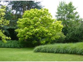 Jardins paysagers